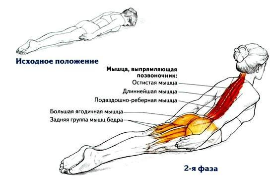 видео гимнастика для лица от морщин видео смотреть