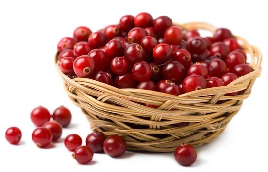 Чем полезна северная ягода клюква?