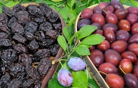 Чернослив: непревзойдённая польза для организма. Есть ли вред и как его избежать?