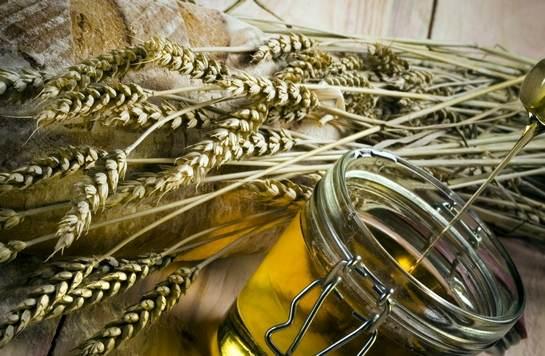 Масло зародышей пшеницы в капсулах отзывы