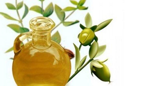 масло жожоба свойства и применение