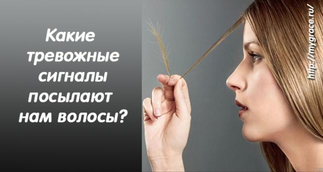 Секущиеся кончики, ломкость, перхоть, выпадение: о чем сигнализирует состояние волос и что с этим делать?