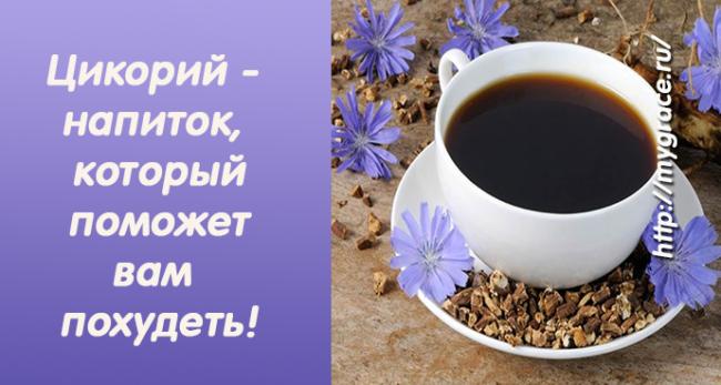 Цикорий - напиток, который поможет вам похудеть!