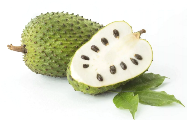 Саусеп - что это такое и чем он полезен? 10 удивительных фактов о чудо-фрукте