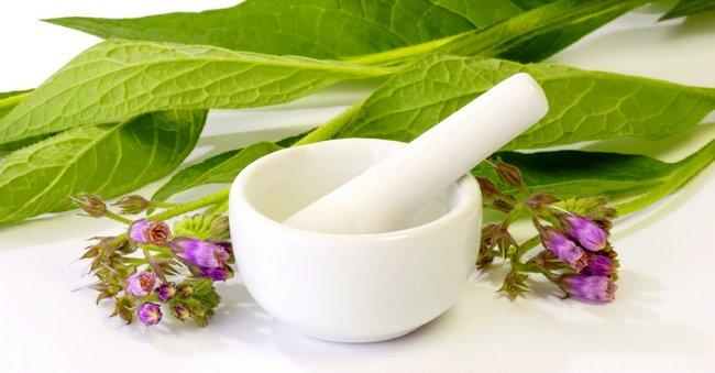 6 растительных альтернатив болеутоляющим средствам: не травите организм медикаментами