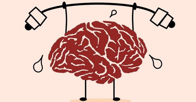 Держи мозг в тонусе! Мозг тоже нуждается в тренировке