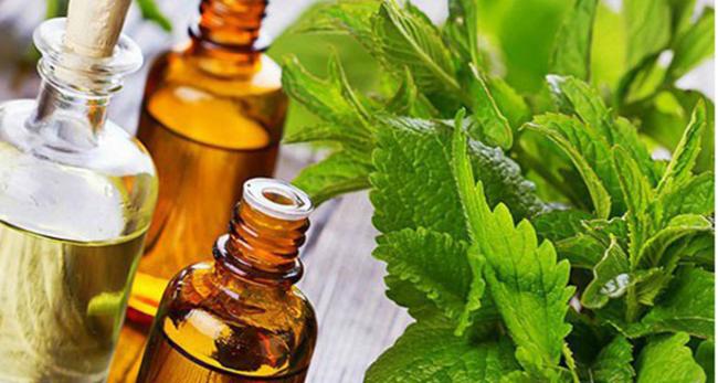 ТОП-4 аромата, которые раздражают окружающих или какие духи не стоит покупать
