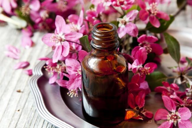 Масло герани: чудесные свойства и применение для красоты и здоровья